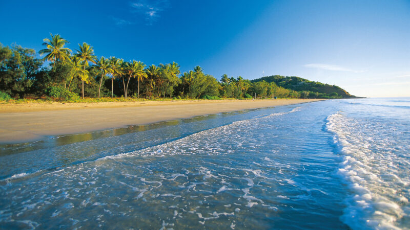 Four Mile Beach - Daintree Boardalk - 9 Free Things to do in Port Douglas Daintree