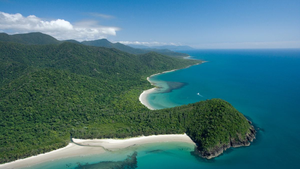 Cape Tribulation | Find Things to Do & Accommodation in Cape Trib