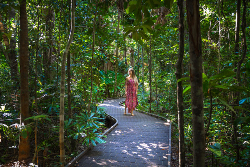 Things to do in Port Douglas Daintree - 10 Reasons To Visit Port Douglas Daintree 7