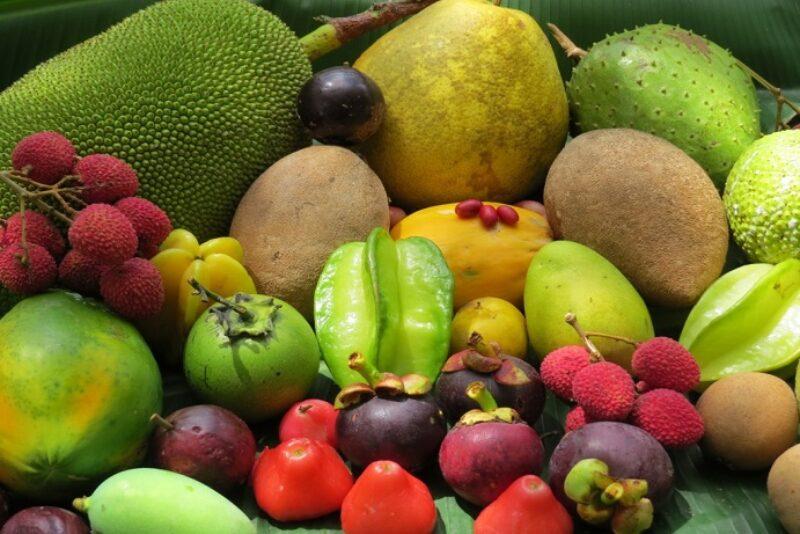 всем картинки с тропическими плодами изменил