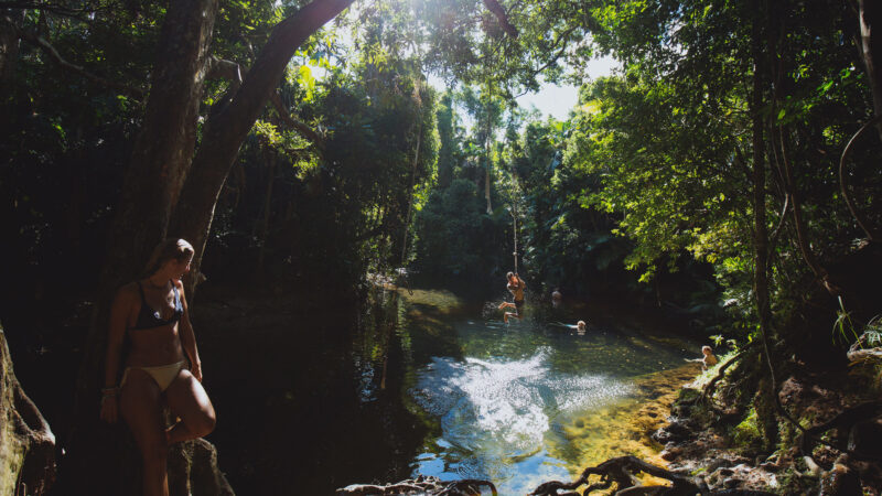 Masons Swimming Hole - Daintree Boardalk - 9 Free Things to do in Port Douglas Daintree