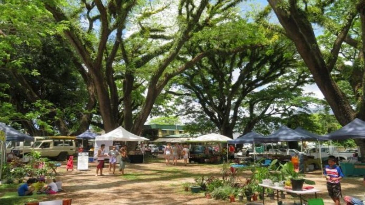 Local foods Mossman Markets Via Fb
