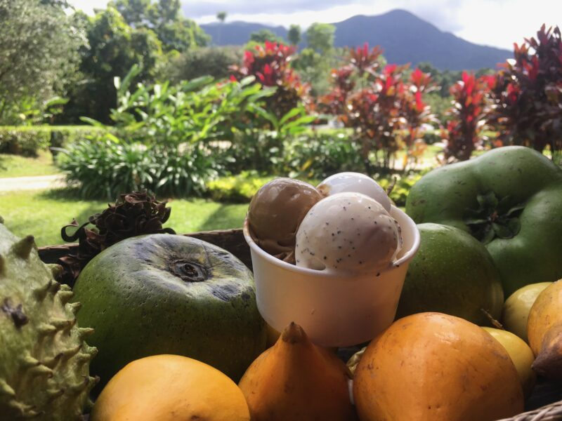 Local foods Daintree Ice Cream Fruit