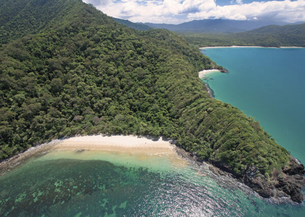 Daintree to-do list
