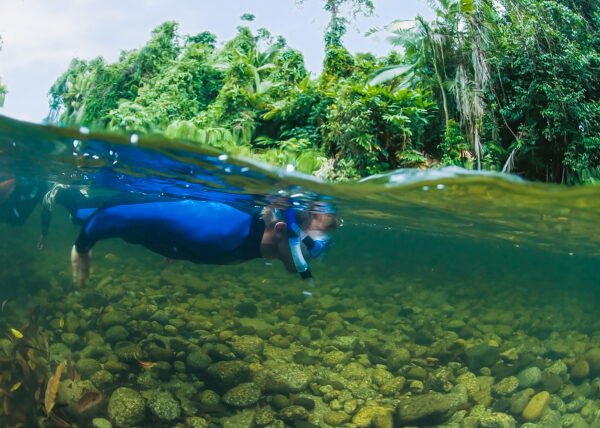 Back Country Bliss River Drift Snorkelling
