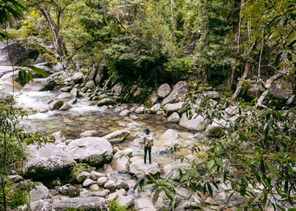 Man With Backpack At Mossman Gorge