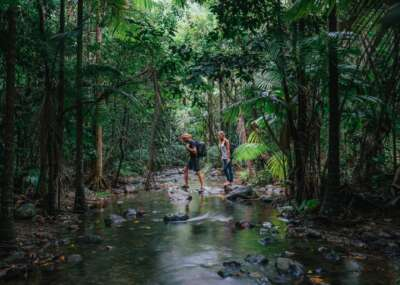 Young couple hiking through Daintree rainforest