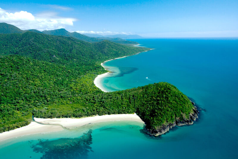 Cape Tribulation - - 5 Must Do Day Trips from Port Douglas